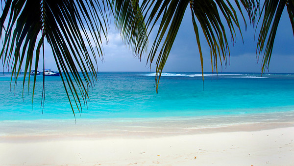 Surf Mentawai Co