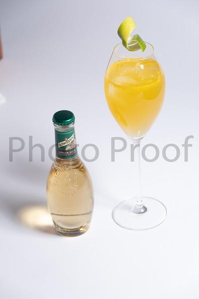 BIRDSONG Schweppes Cocktails 060.jpg