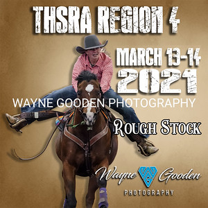 TXHSRA Region 4 Rough Stock