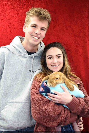 Rabbit Haven Events