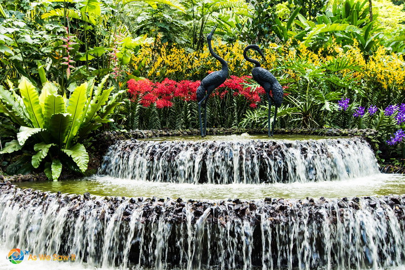 Singapore-0386018.jpg