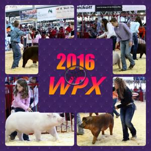 2016 EXPO