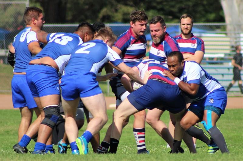 sharks-rugby7s-facebook-photos-1 (20).jpg
