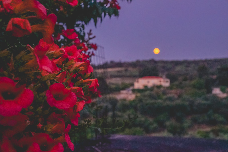 Crete 06.17-277.jpg