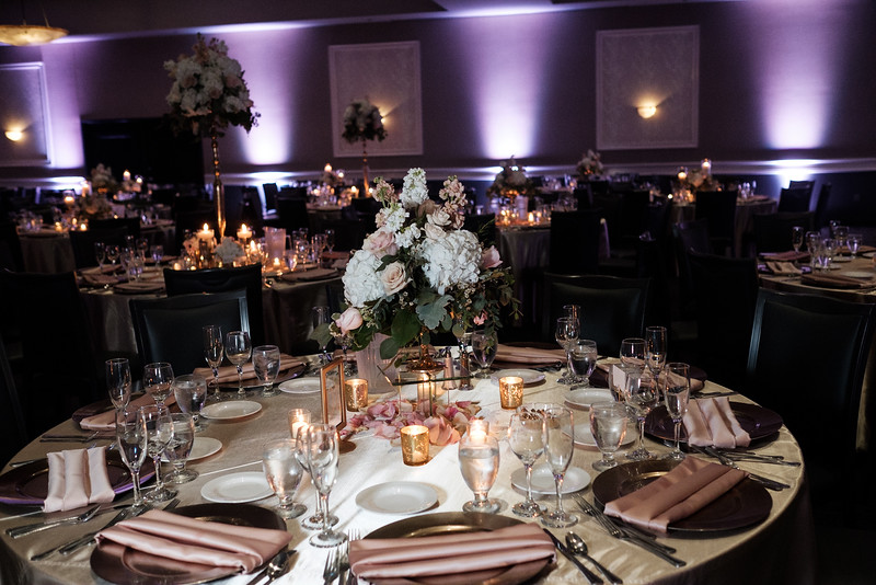 Lacee & Matt's  Klehm Arboretum / Giovanni's Wedding