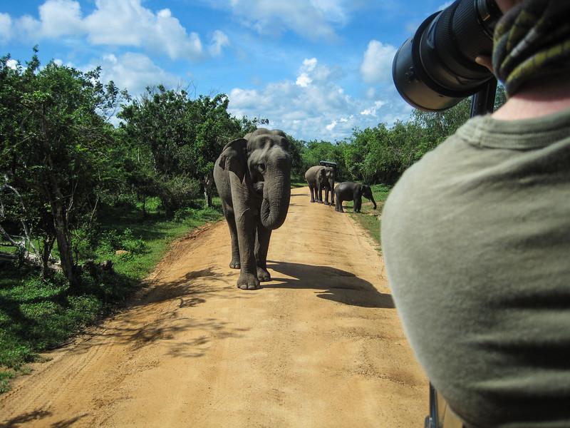 Sri_Lanka17-9851.jpg