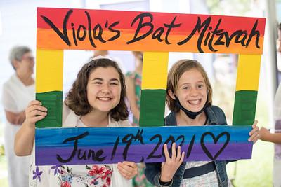 Viola's Bat Mitzvah 2021