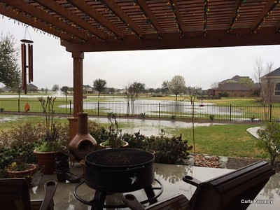 2015 03-09 our very wet yard