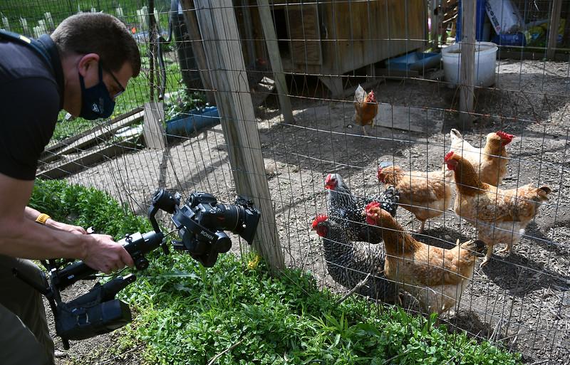 SU_Farm_Chickens_Dave_ADJ_280.jpg