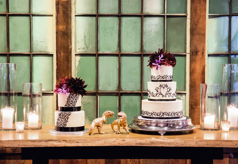 sodo-park-fall-wedding-dinosaur-theme-wedding-photos-carol-harrold-photography-21.jpg
