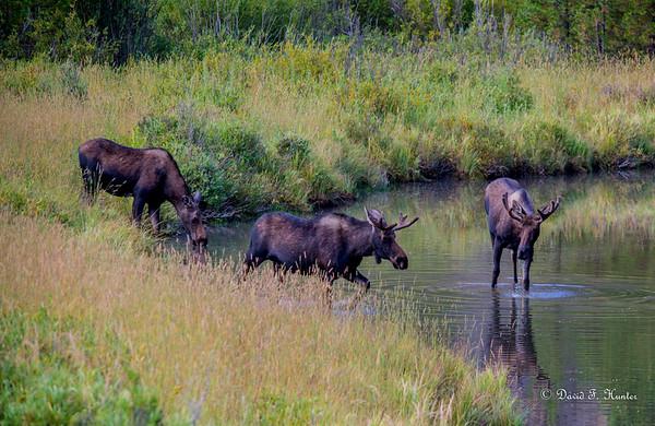 Ride Around Colorado August 2015