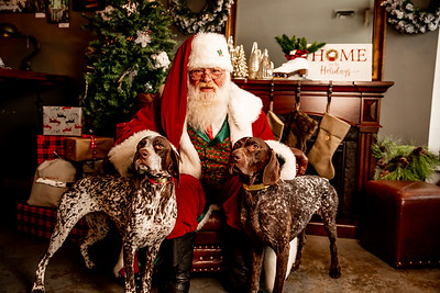 Santa photos day 3