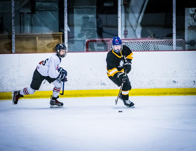 Bruins2-382.jpg