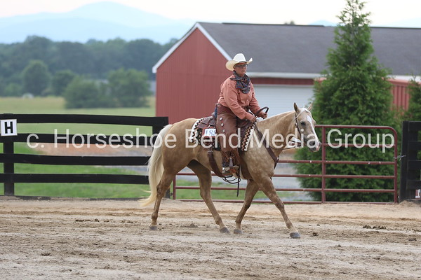 2019 Sprouse's Corner Ranch Summer Show #2 -- Afternoon Classes