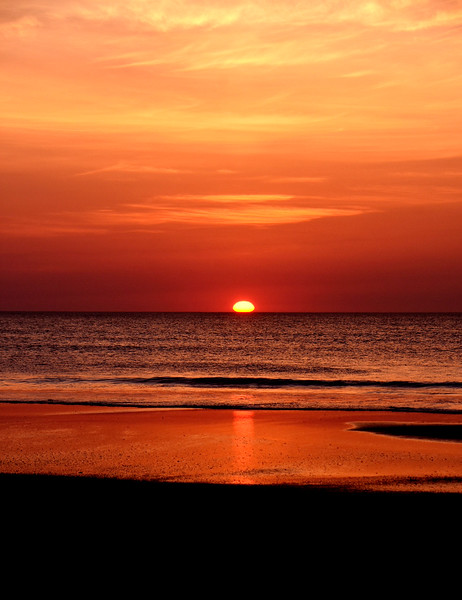 Sunrise-corolla-June13g-as-shot-Beechnut-Photos-rjduff.jpg