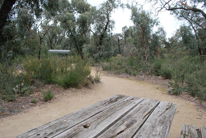 Stringbark carpark and picnic area 2.JPG