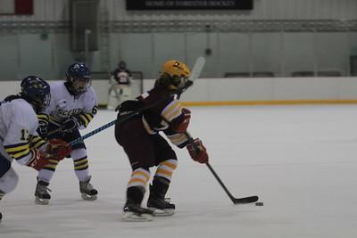 Girls' Hockey: LFHS
