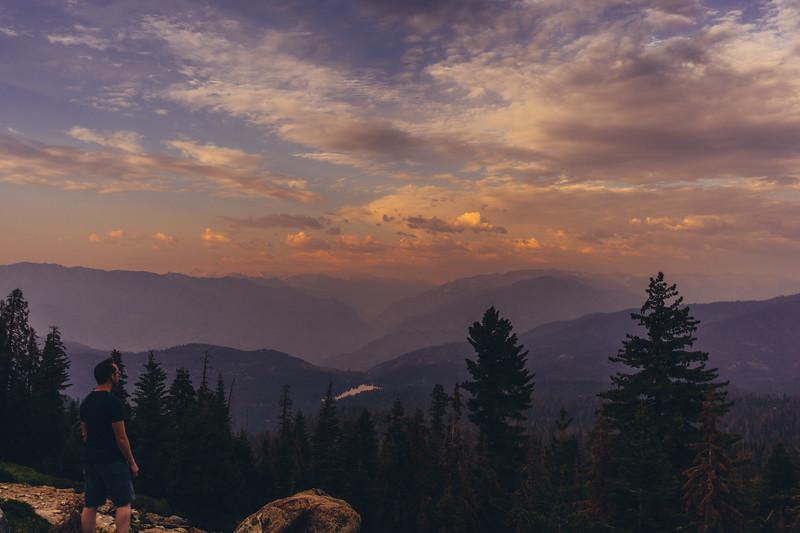 Rui in Sequoia-06971.jpg