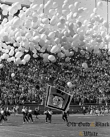 Wake Forest 1985 - 1989