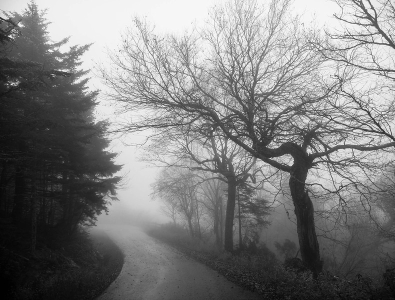 Mountain Road in Fog