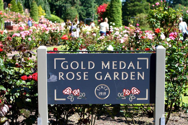 Portland International Rose Test Garden  2247.jpg