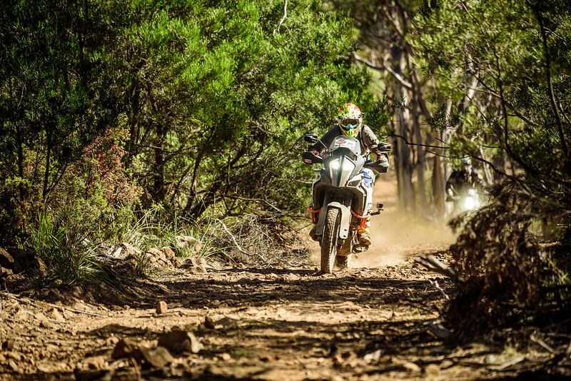2019 KTM Australia Adventure Rallye (577).jpg