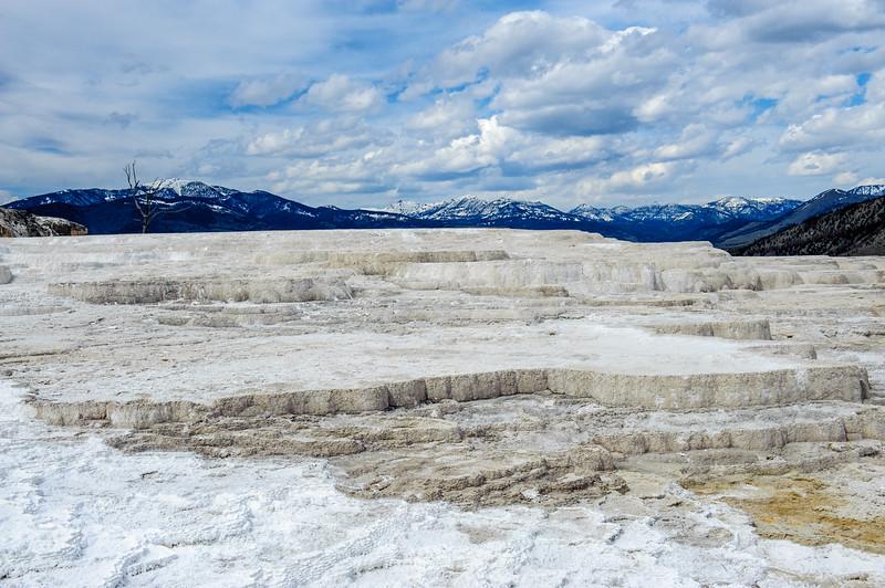 20130511-12 Yellowstone 130.jpg