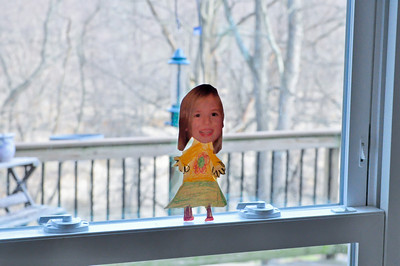 March 5 Trip to DC - Flat Anna Project