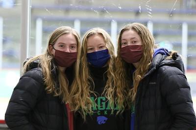 Varsity Girls Hockey vs Farmington