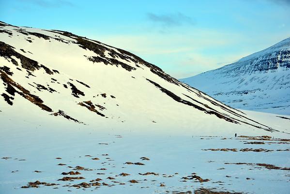 Hornvík mars 2015