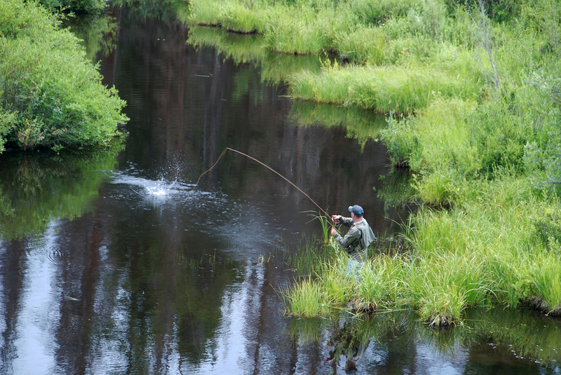 A fly fisherman hooks a Brook trout on a remote pond in northern Colorado