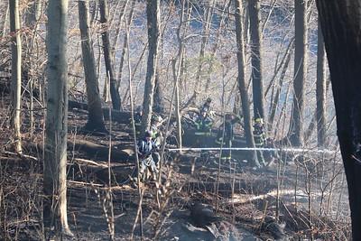 Brush fire - Osbornedale State Park Derby, CT - 3/15/2021