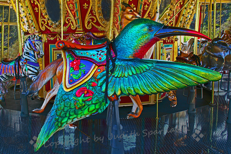 Hummingbird Carousel ~ A different version of this wonderful carousel.  Imput appreciated.