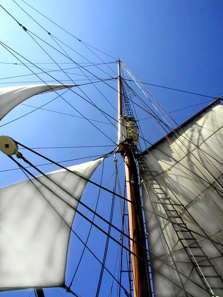 Tall ShipW.jpg
