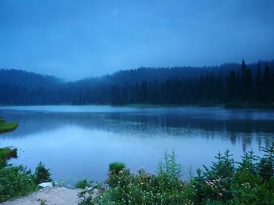 Paradise, Mt. Rainier, 8-17