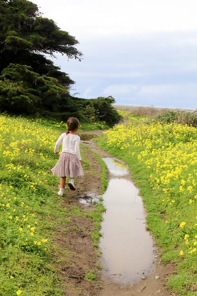 Roads that Lead to Big Sur:)