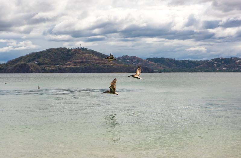 Costa Rica 16.jpg