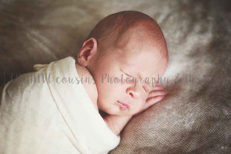 Noah + Jude {newborn}