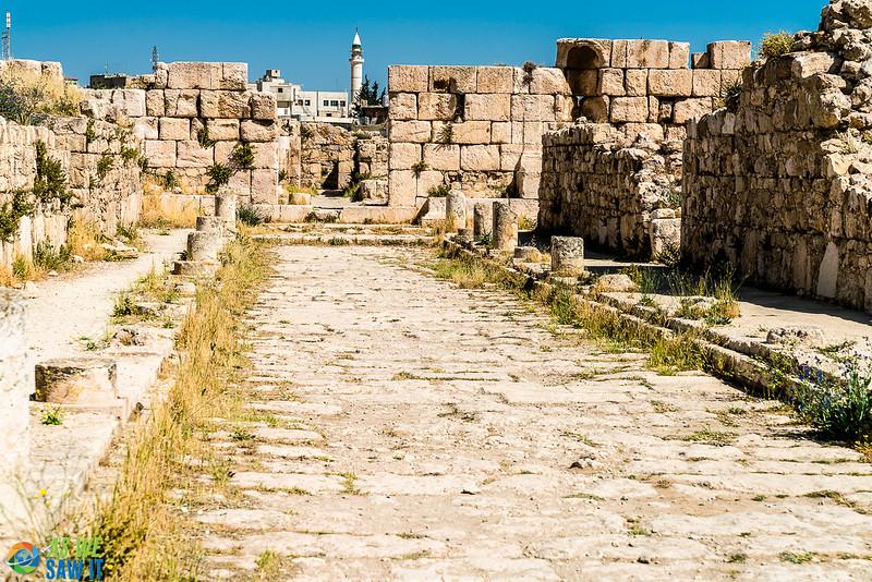 Amman-Citadel-05967-33.jpg