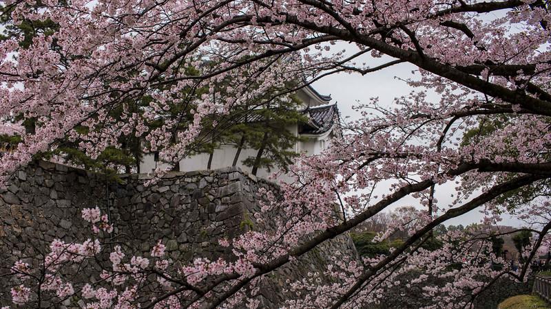 Nagoya 310313 2 .jpg