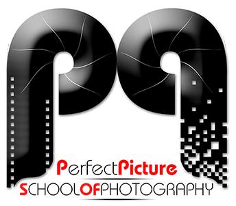PPSOP_Logo.png