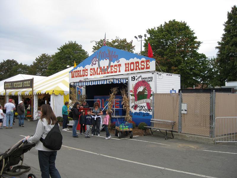 World's Smallest Horse sideshow.