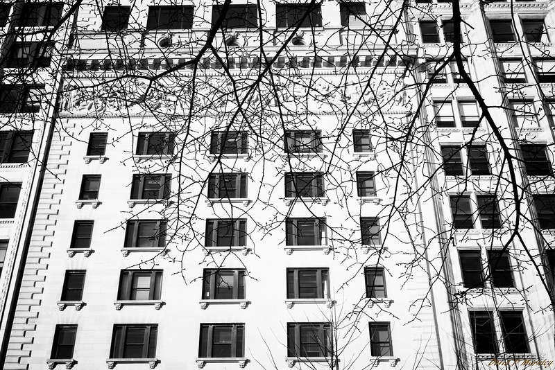 Branching Contrast