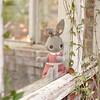 Daydreaming Rabbit