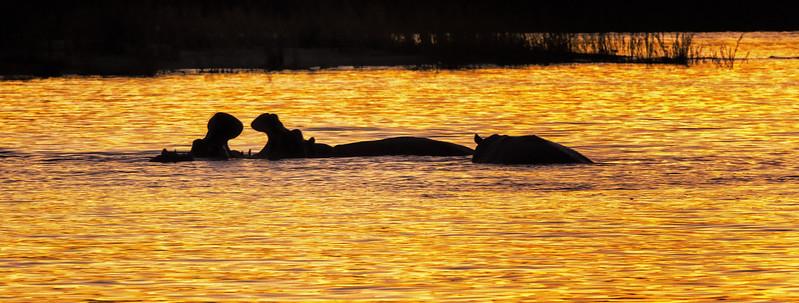 2014-08Aug23-Victoria Falls-S4D-65.jpg