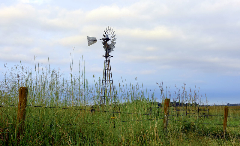Symbol of the Great Plains
