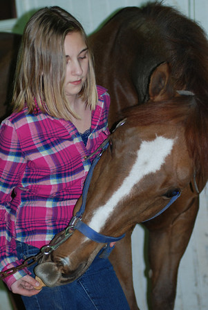 Photo Class (Riding lesson)