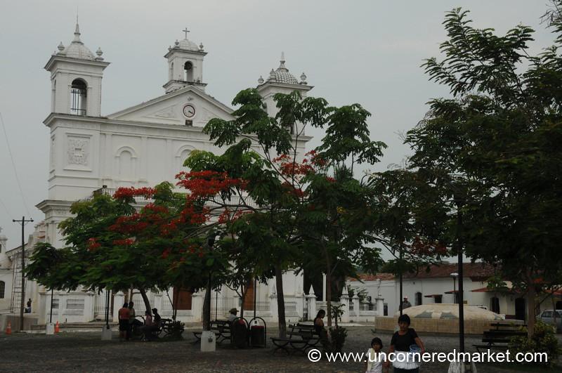 Colonial Church and Trees - Suchitoto, El Salvador