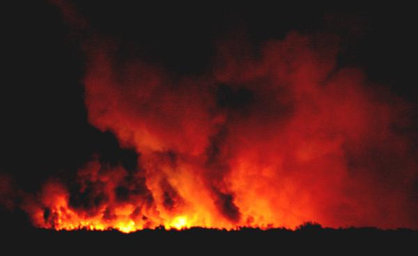 Avondale Fire 2008