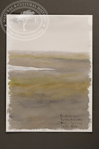 """Eastern view from the field station at Forlandsletta 